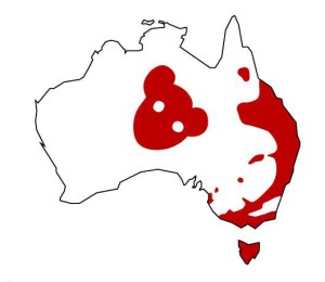 drop bear_big